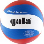 GALA Pro-Line 10 FIVB