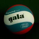 Мяч волейбольный Gala BV5591S Pro-Line FIVB