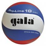 Мяч волейбольный Gala Pro-Line 10
