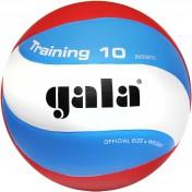 GALA Training 10